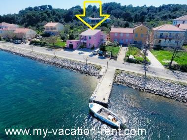 Appartamenti Zvone1 At The Water Front Veli Rat Isola Di Dugi Otok Dalmazia Croazia Miacasavacanza It